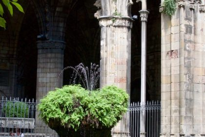 goose at Barcelona Cathedral