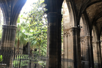 garden of Barcelona Cathedral
