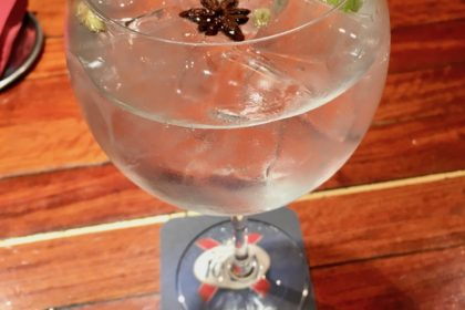 delicious gin and tonic